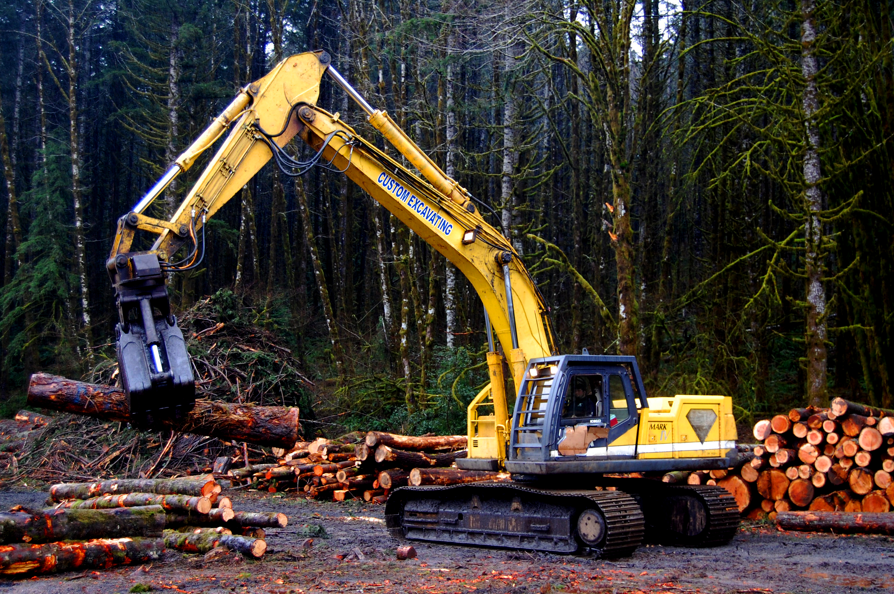 Logging Operation In The Tillamook State Forest Courtesy
